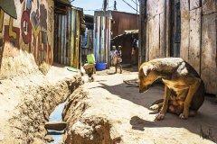 Nairobi: slum Kibera